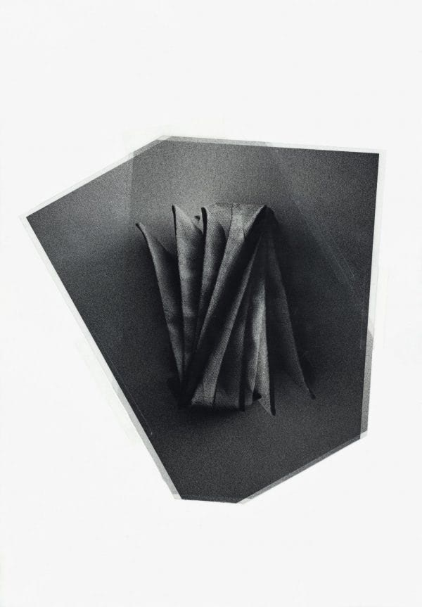 Pablo Capitán del Rio, Comensal, 2019, Collage y transferencia sobre acetato,50 x 35 cm